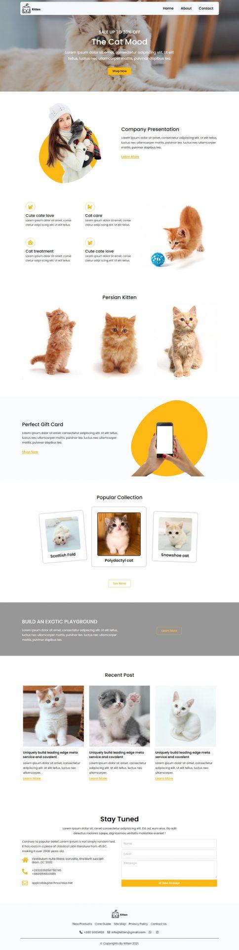 kitten-pet-care-pet-shop-website-template